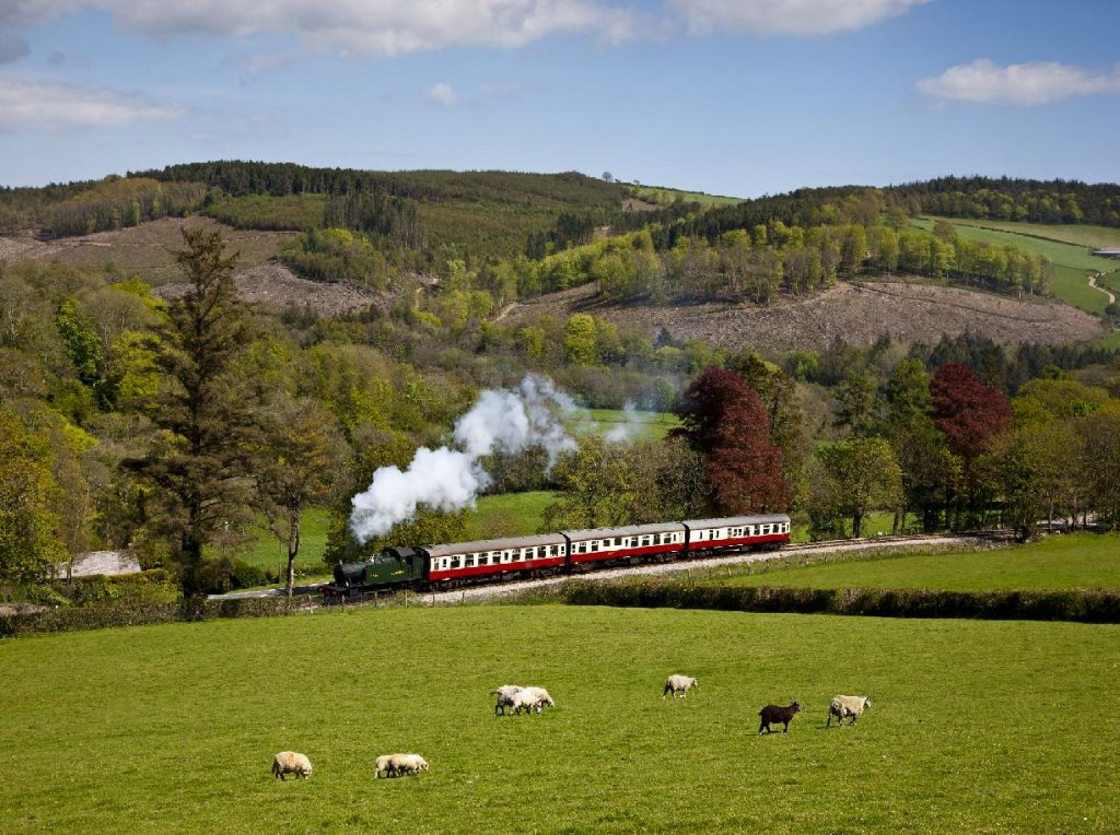 A heritage steam train on the Bodmin & Wenford Railway puffs our steam as it travels through a rural valley in the Cornish countryside in the springtime.